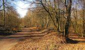 Trail Walk RETHEUIL - en forêt de Retz_76_dans les forêts de Retz et de Compiègne - Photo 141