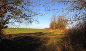 Trail Walk RETHEUIL - en forêt de Retz_76_dans les forêts de Retz et de Compiègne - Photo 48