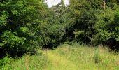 Randonnée Marche SAINT-JEAN-AUX-BOIS - en forêt de Compiègne_2_ruines gallo-romaines de Champlieu_les Petits Monts - Photo 131