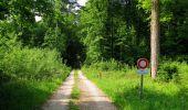 Randonnée Marche COYOLLES - en forêt de Retz_78_les rayons du Rond Capitaine - Photo 110