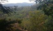 Randonnée Marche MUHLBACH-SUR-BRUCHE - Le Jardin des Fées par la cascade de Soulzbach - Photo 40