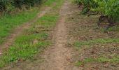 Trail Walk LE LOROUX-BOTTEREAU - 28 06 2020 le loroux - Photo 7