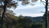 Randonnée Marche VENELLES - Venelles : Collet Blanc - Grand Collet - Photo 1