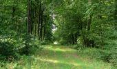 Randonnée Marche LONGPONT - en foret de Retz_ 41_Longpont_Vertes Feuilles_AR - Photo 125