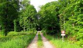 Randonnée Marche COYOLLES - en forêt de Retz_78_les rayons du Rond Capitaine - Photo 105