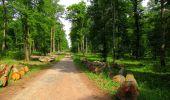 Randonnée Marche COYOLLES - en forêt de Retz_78_les rayons du Rond Capitaine - Photo 31