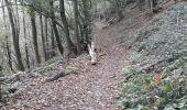 Randonnée Marche Profondeville - rando Profondeville avec Gégé, Flo, Annne-Fran (bifurcation au 2ème raccourci) - Photo 4