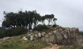 Randonnée Marche BIZE-MINERVOIS - Montredon / Combebelle-le-haut - Photo 2