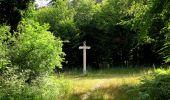 Randonnée Marche SAINT-JEAN-AUX-BOIS - en forêt de Compiègne_2_ruines gallo-romaines de Champlieu_les Petits Monts - Photo 130