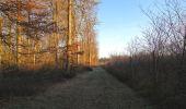 Trail Walk SAINT-JEAN-AUX-BOIS - en forêt de Compiègne_33_12_2019_les Tournantes de l'étang Saint-Jean et des Prés Saint-Jean - Photo 197