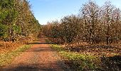 Trail Walk RETHEUIL - en forêt de Retz_76_dans les forêts de Retz et de Compiègne - Photo 140