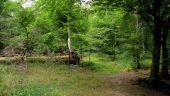 place PUISEUX-EN-RETZ - Point 16 - Photo 6