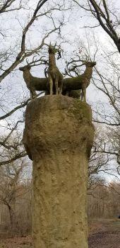 Point d'intérêt NANDY - Le Gardien de la Forêt - Photo 1