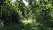 place LACROIX-SAINT-OUEN - Point 14 - Photo 6
