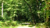 place VIEUX-MOULIN - Point 23 - Photo 17