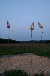 place Somme-Leuze - Sentiers d'art - Bourgeons - Photo 2