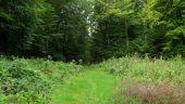 place MONTGOBERT - Point 15 - Photo 2