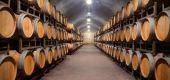 Point d'intérêt Santa Marinha e São Pedro da Afurada - Caves du vin de Porto - Photo 2