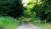 place SAINT-JEAN-AUX-BOIS - Point 45 - Photo 6