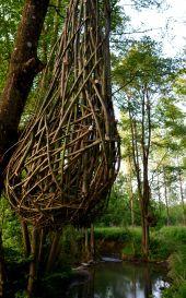 Point d'intérêt Somme-Leuze - Sentiers d'art - Nids - Photo 2