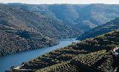 Point d'intérêt Santa Marinha e São Pedro da Afurada - Fleuve le Douro - Photo 2