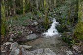 Point d'intérêt LE MENIL - Ruisseau des Granges - Photo 1