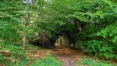 Point d'intérêt SAINT-JEAN-AUX-BOIS - Point 45 - Photo 7