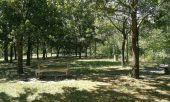 Point d'intérêt TOULOUSE - TT18 - Départ Cité del'Espace - Parc de la Grande Plaine - Photo 1