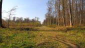 place PUISEUX-EN-RETZ - Point 21 - Photo 4