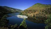 Point d'intérêt Santa Marinha e São Pedro da Afurada - Fleuve le Douro - Photo 3