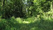 place LACROIX-SAINT-OUEN - Point 14 - Photo 4