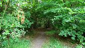 place SAINT-JEAN-AUX-BOIS - Point 45 - Photo 3