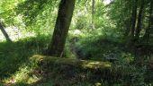 Point d'intérêt LACROIX-SAINT-OUEN - Point 16 - Photo 3