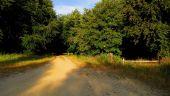place SAINT-JEAN-AUX-BOIS - Point 45 - Photo 5