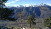 Point d'intérêt CAZAUX-FRECHET-ANERAN-CAMORS - 4 arbres - Photo 1