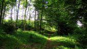 place SAINT-JEAN-AUX-BOIS - Point 42 - Photo 5
