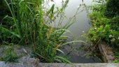 place VIEUX-MOULIN - Point 31 - Photo 1
