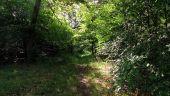 Point d'intérêt SAINT-JEAN-AUX-BOIS - Point 45 - Photo 6
