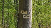 Point d'intérêt PUISEUX-EN-RETZ - Point 21 - Photo 1