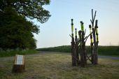 place Havelange - Sentiers d'Art - Le Petit bois  - Photo 3