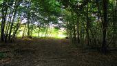 place SAINT-JEAN-AUX-BOIS - Point 46 - Photo 6
