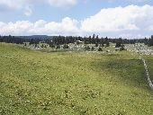Point d'intérêt Le Chenit - combe des Amburnex - Photo 1