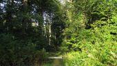 place SAINT-JEAN-AUX-BOIS - Point 4 - Photo 3