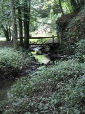 Point d'intérêt PLEUDIHEN-SUR-RANCE - Ruisseau de l'étang de la Chesnaye - Photo 1