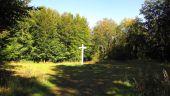 place SAINT-JEAN-AUX-BOIS - Point 21 - Photo 1