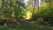 Point d'intérêt SAINT-JEAN-AUX-BOIS - Point 34 - Photo 2