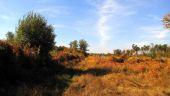 place SAINT-JEAN-AUX-BOIS - Point 29 - Photo 4