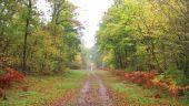place SAINT-JEAN-AUX-BOIS - Point 5 - Photo 1