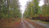 place SAINT-JEAN-AUX-BOIS - Point 5 - Photo 2