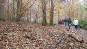 place COIGNIERES - Descente aux étangs - Photo 1